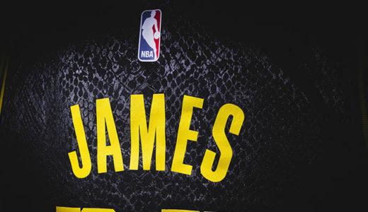 【フォートナイト】NBA「レブロン・ジェームズ」スキンがアイコンシリーズで登場か?